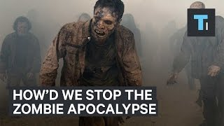 How we'd stop the zombie apocalypse