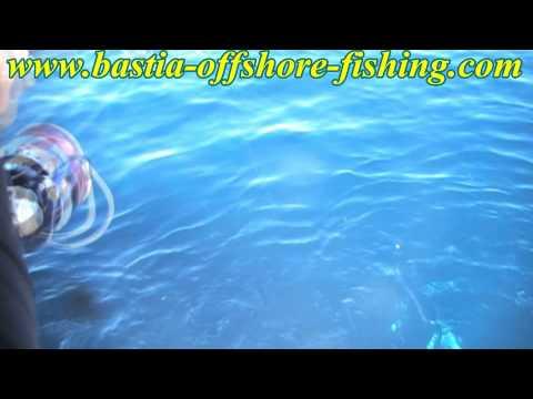 Démarrage de la saison 2013 avec le Bastia Offshore fishing Club !