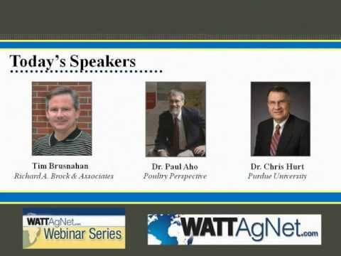 Poultry Outlook 2012: Grains, poultry and red meats supply and demand - webinar