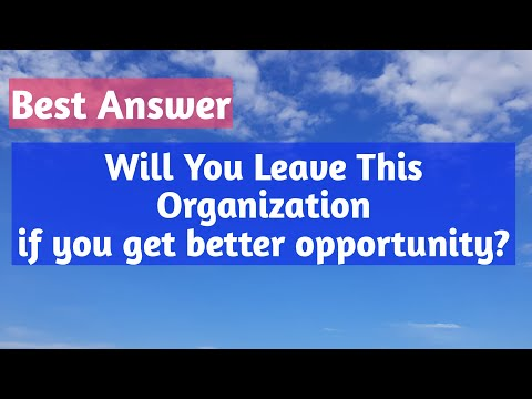Will you Leave this company if you get better opportunity?