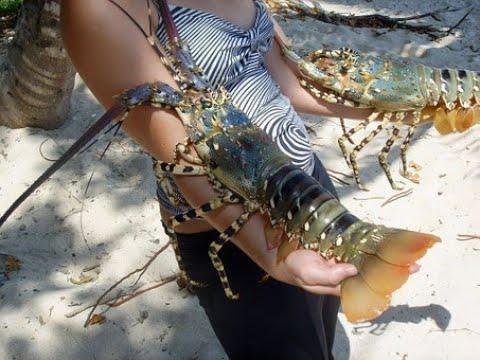 Crawfishing In Moses Lake Washington