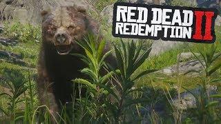 NOS ATACA UN OSO EN RED DEAD REDEMPTION 2 Video