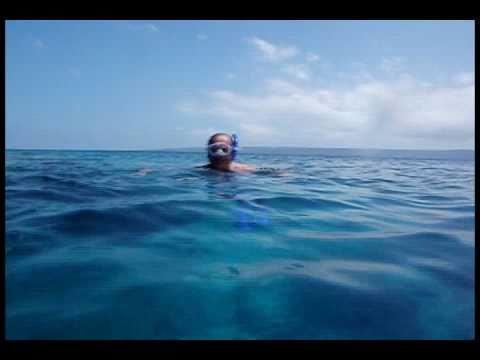 Snorkeling in Vanuatu, Paradise Cove resort p3.avi