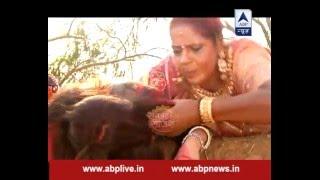 Will Kokila be able to save Gopi's life?
