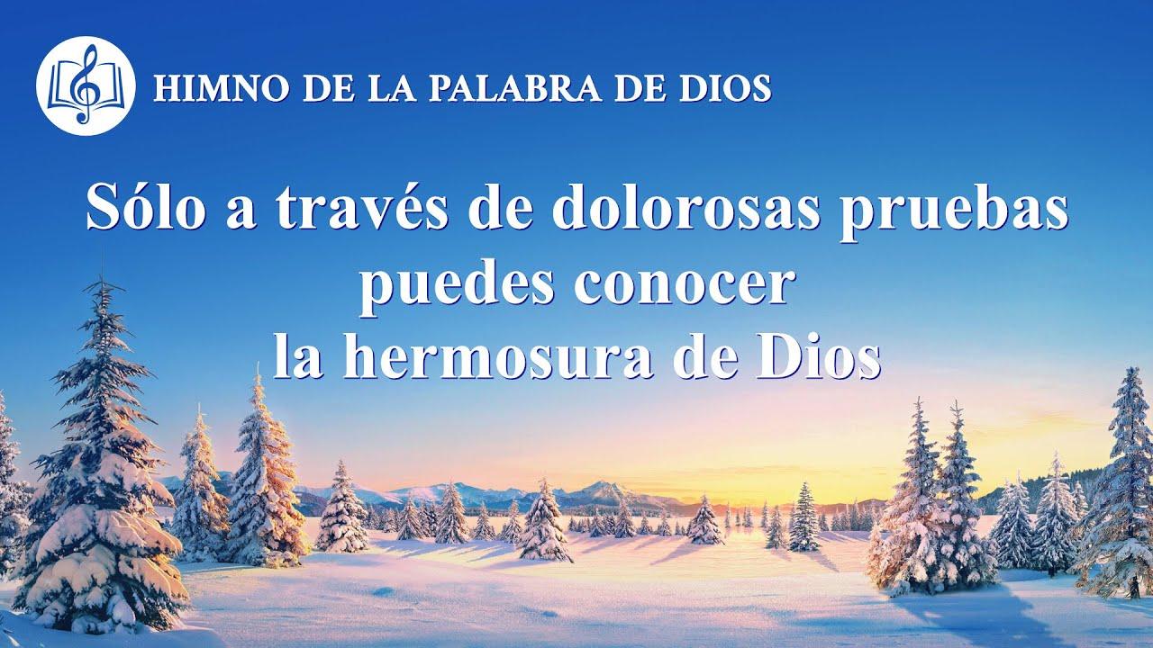 Canción cristiana   Sólo a través de dolorosas pruebas puedes conocer la hermosura de Dios