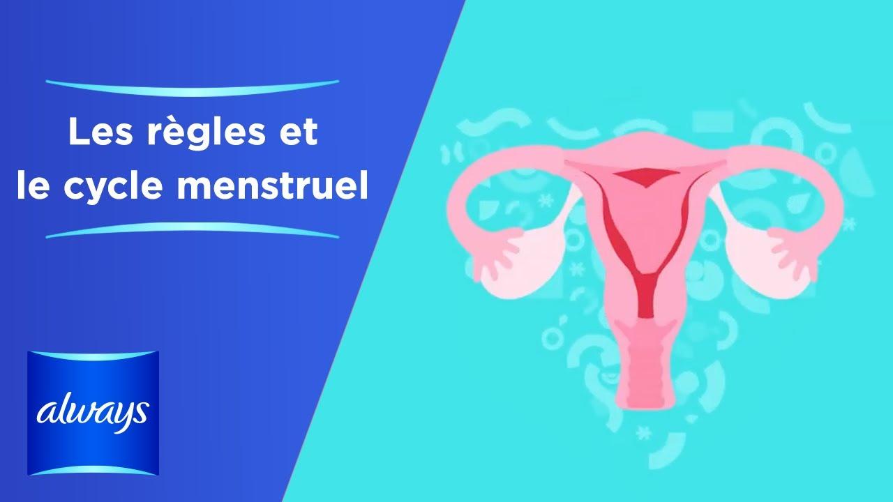 Download Qu'est-ce que les règles et le cycle menstruel?