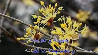 اجمل اغاني حكيم نار نار كاريوكي ahmed disco dj