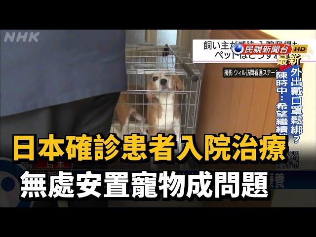 日本確診患者入院治療 無處安置寵物成問題-民視台語新聞