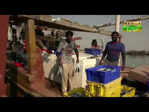 Qatar wakra post kadal kollai eran