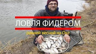 Рыбалка. Ловля фидером ранней весной на Оке. Рыбалка на фидер.  Секреты ловли на фидер.