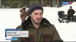 видео: Как егерь Кислухинского заказника ловит браконьеров с помощью гаджетов?