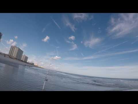 Jacksonville Fl Surf Fishing (part 1)