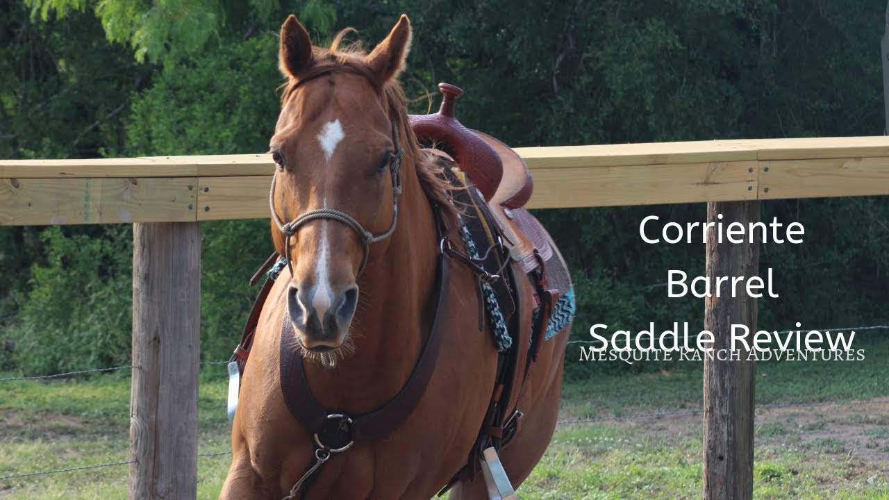 Corriente Barrel Saddle Review