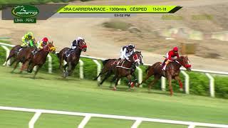 Vidéo de la course PMU MAIDEN
