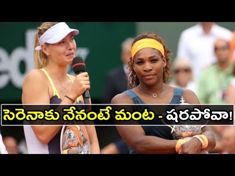 Serena Williams slams Maria Sharapova over book 'hearsay' as showdown looms   Oneindia Telugu