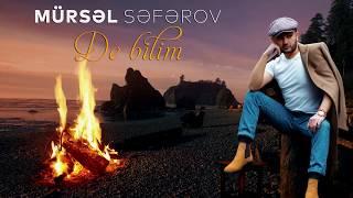 Mursel Seferov - De bilim  2020  Resimi