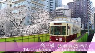 【2018.03.24】東京さくらトラム 沿線の桜情報3
