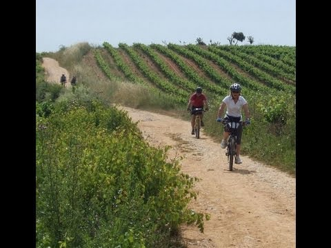 Cycling the Camino de Santiago -- How it Works