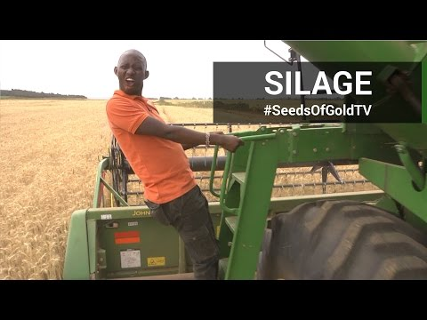 Silage - Seeds of Gold TV Season 2 Episode 5