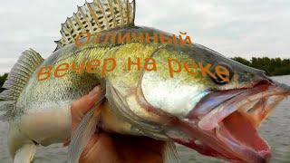 Рыбалка на реке кия 4 августа 2021 г