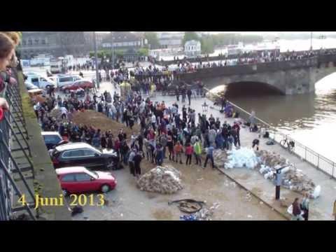 Elbe Hochwasser Dresden 2013 Juni
