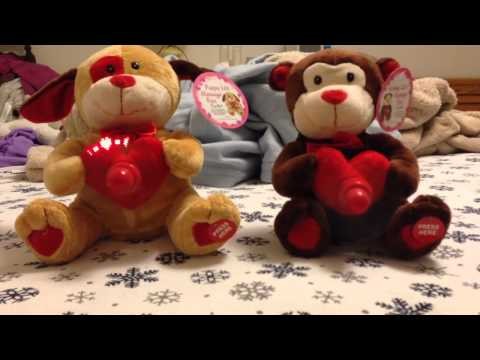 The Valentine's Day Singing Bears 2-14-14