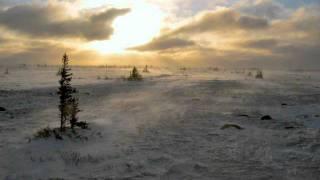 Squarepusher - Tundra 4 (Hiqh Quality)