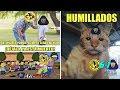 Memes America vs Pumas 6-1 Goleada America Semifinal Apertura 2018