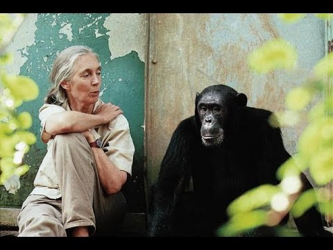 Dr. Jane Goodall: Reasons for Hope