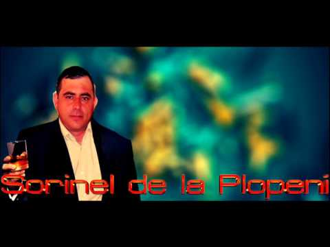 SORINEL DE LA PLOPENI - AM BAIAT SI ITI MULTUMESC 2016