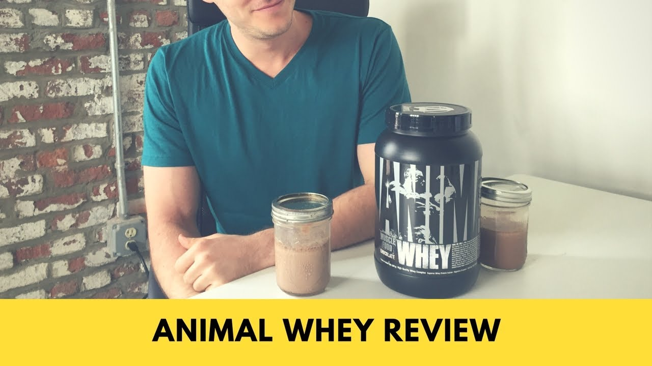 Animal Whey Protein Review — Good for More Than Bodybuilders? - BarBend
