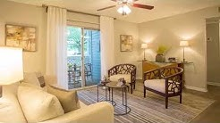 Advenir at the Oaks Apartments in Ocoee, FL - ForRent.com