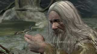 Radagast & The Spider-Queen -- With Sword & Staff (LotR: War in the North)