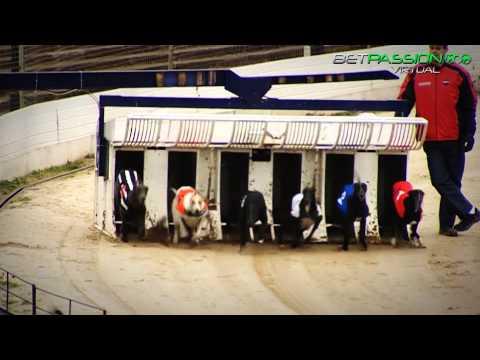 Virtual race sisal come vincere