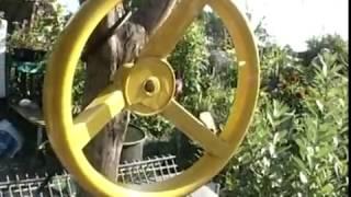 видео Жук Жужелица садовая – полезное насекомое в саду