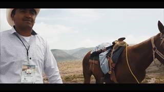 Backpack Discovery - Tour à cheval au milieu du semi désert du Mexique / Real de Catorce