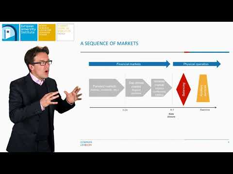 Market design for electricity – Comparing the US and EU | Fabien Roques