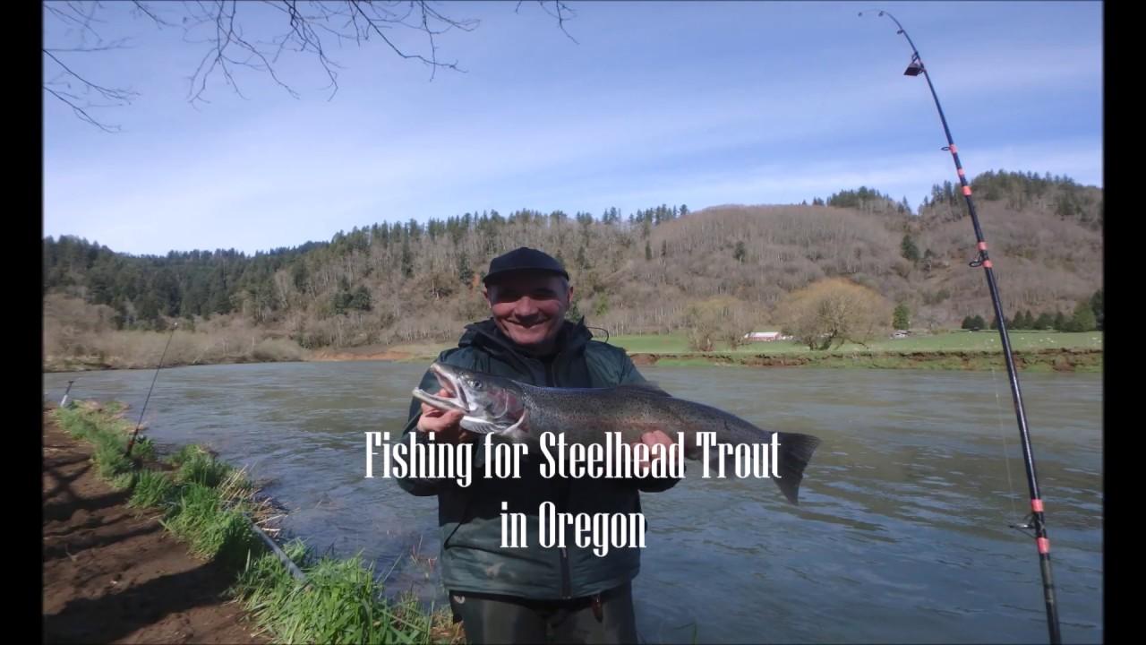 Steelhead fishing in oregon youtube for Oregon free fishing day 2017