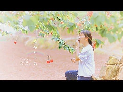 【山野纪】美食vlog   从春天飘来的樱桃派   糯米圆子