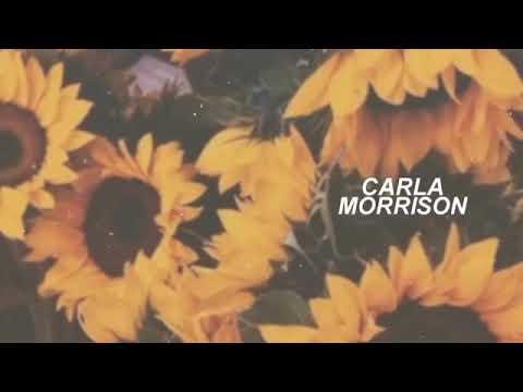 TE REGALO Un Lindo Tema De Carla Morrison  [letra Lyrics].