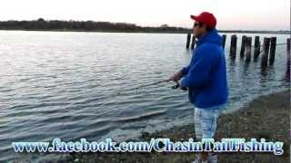 "Striper Fishing Top Water Action. How to ""Walk The Dog"" with a Zara Spook Lure"