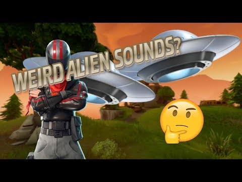 I Was Playing Fortnite and Heard This Weird Noise?