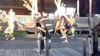 Tari tradisional adat Dayak kalimantan...bagus kan(dayak kalimantan traditional dance )