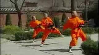 trainning martial arts