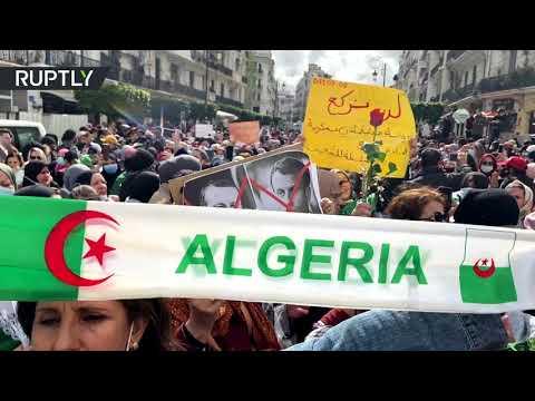 آلاف النساء يشاركن في مسيرة يوم المرأة في الجزائر