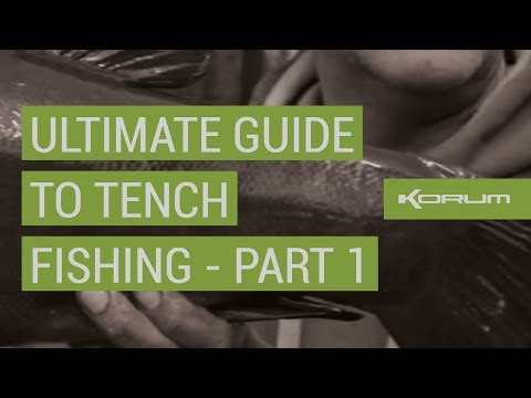 Ultimate Guide to Tench Fishing - PART 1