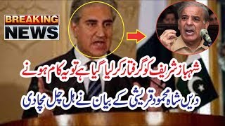 Shah Mehmood Qureshi Dabang Statement About Shahbaz Sharif