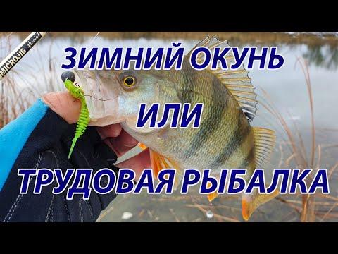 Микроджиг. Трудовая зимняя рыбалка за окунем.