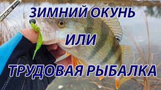 Микроджиг Трудовая зимняя рыбалка за окунем