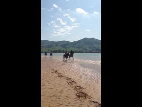 Beach gallop Cantabrian Sea, Spain